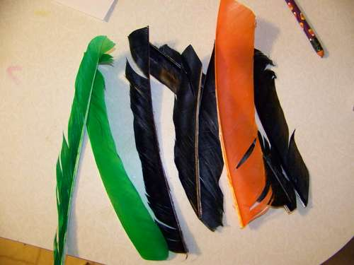 plumas para flechas