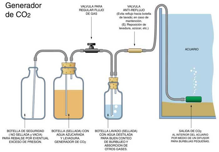 como hacer generador co2 casero para acuarios ikkaro