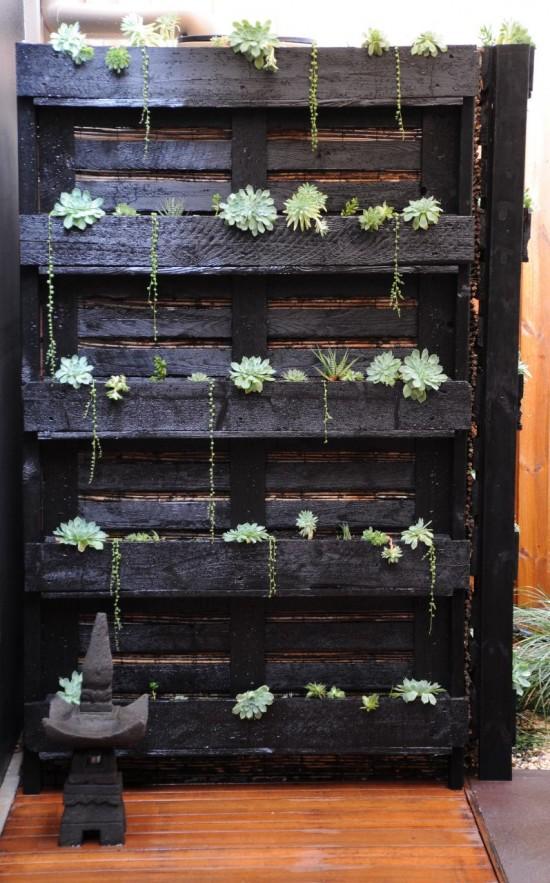jardinera para cactus con palets
