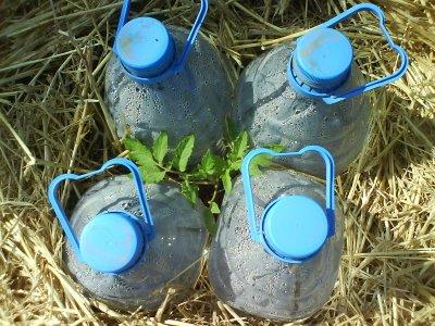 riego por condensacion solar ahorro del agua al regar