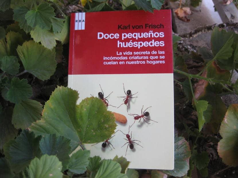 reseña y curiosidades de los insectos en el ensayod e difvulgación doce pequeños huéspedes