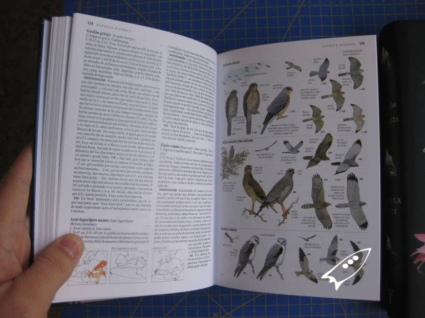 Guía de aves Larsson, la guía de aves de campo más conocida del mundo