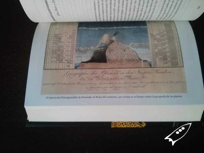 Teorías de la naturaleza de Humboldt en su famosas ilustraciones