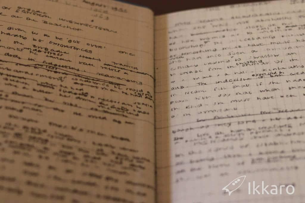 notas sobre la novela
