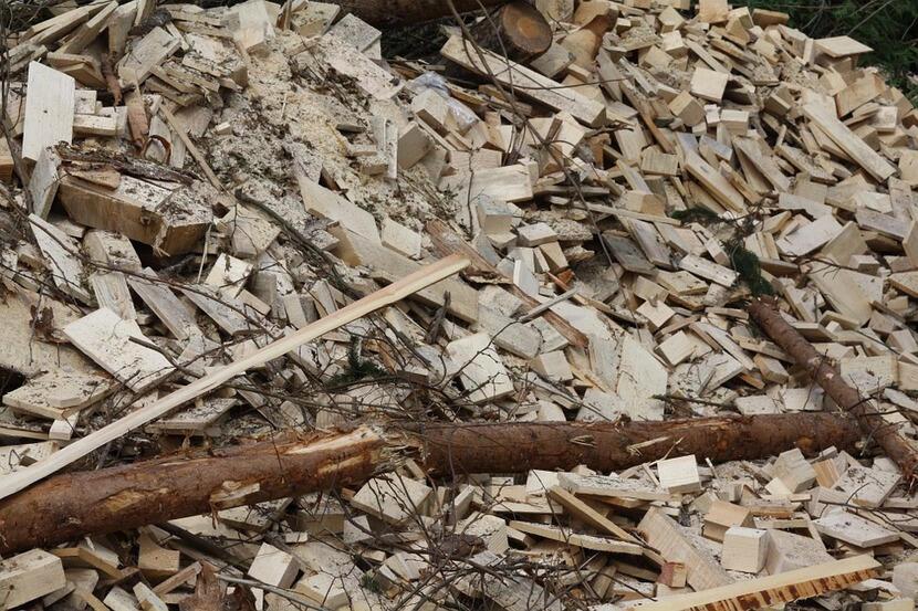 cogeneración y biomasa, un combsutible y reciclaje