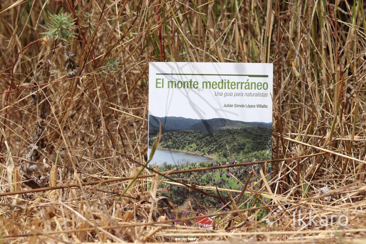 habitats de el monete mediterraneo y su clima