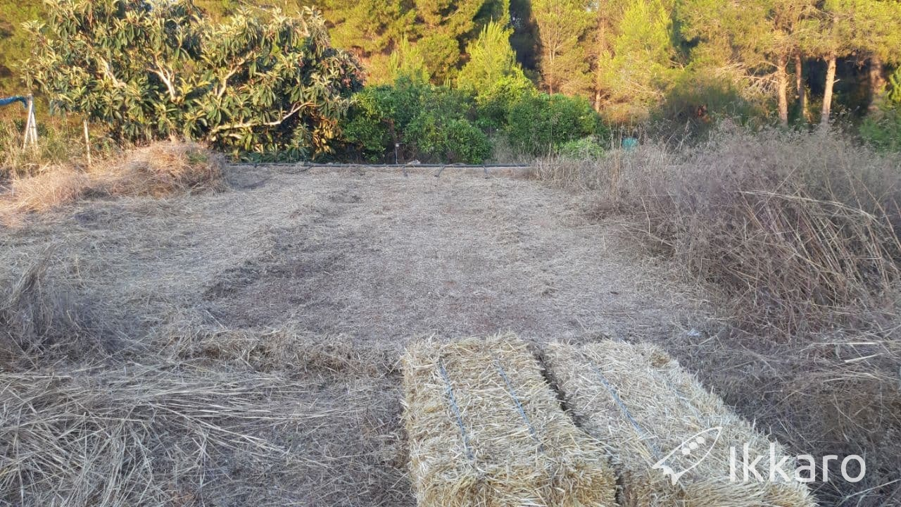 preparación de la tierra sin tractor para permacultura